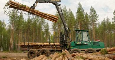 В районе пройдёт «Лесовоз»