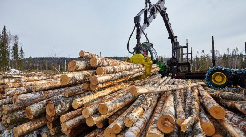 Планируется реализовать до 1 млн кубометров древесины