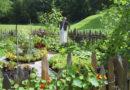 Лыткинцы взялись за благоустройство и огороды