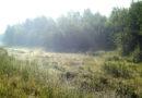 Пожароопасный сезон в Кировской области завершен