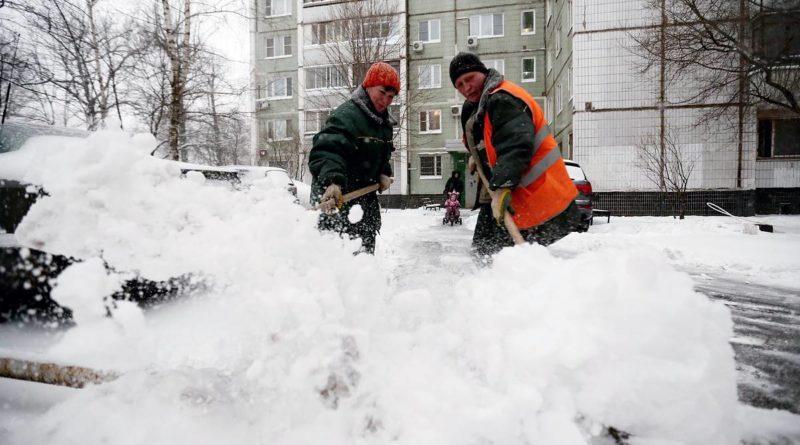 Госжилинспекция рекомендует управляющим компаниям организовать оперативную уборку дворов от снега